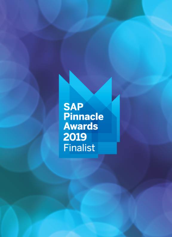 2019 Pinnacle Finalist | SAP S/4HANA Cloud Multitenant Partner of the Year